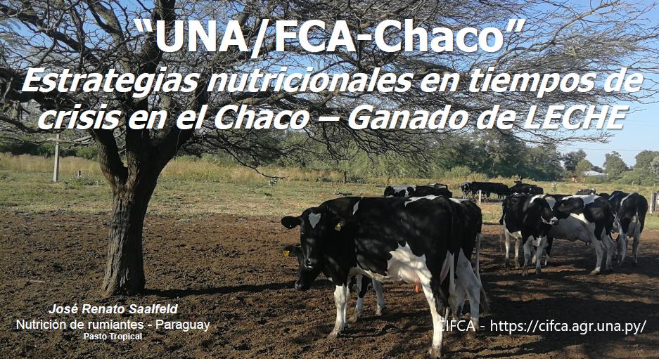 Estrategias nutricionales en tiempos de crisis en el Chaco – Ganado lechero