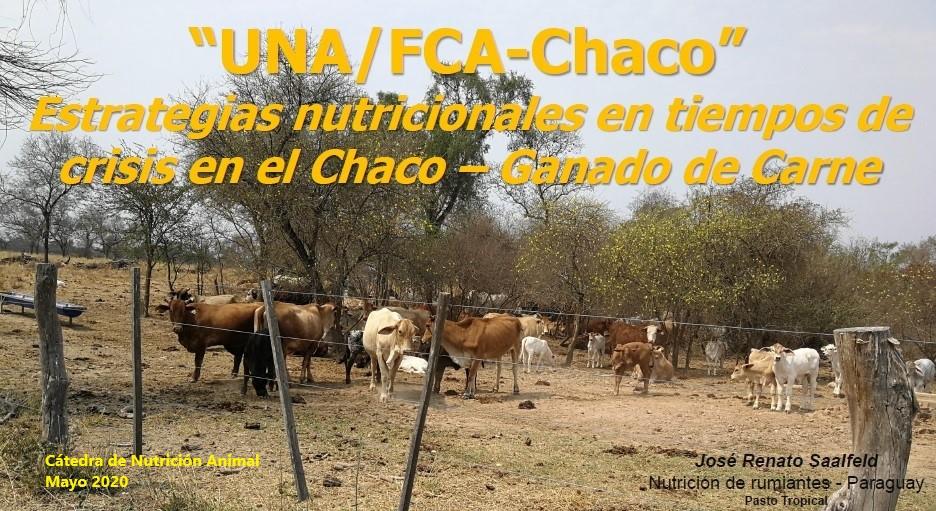Estrategias nutricionales para periodos de escasez en la producción ganadera del Chaco Paraguayo Ganado de corte – J.R. Saalfeld
