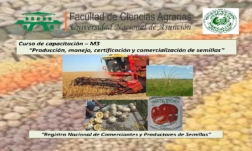 """""""Propiedad intelectual en la producción y comercialización de semillas"""""""